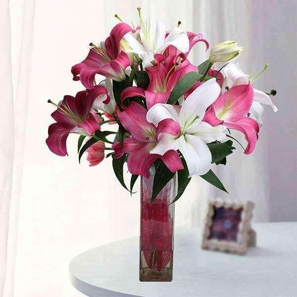 Hoa ly nở được bao lâu? Kinh nghiệmcắm và chăm hoa ly, hoa ly tiếng Anh là gì?