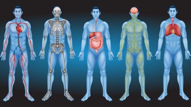 Cứ qua 10 năm trôi qua, cơ thể bạn sẽ thay đổi như thế nào