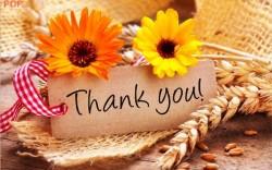 Tổng hợp những lời cảm ơn bằng tiếng Anh hay, ý nghĩa nhất