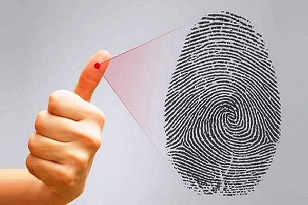 Đường vân đặc biệt trên ngón tay cái bật mí điều gì về bạn?