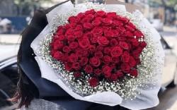 Ý nghĩa số hoa hồng tặng người ấy, tặng khi tỏ tình bạn nên biết