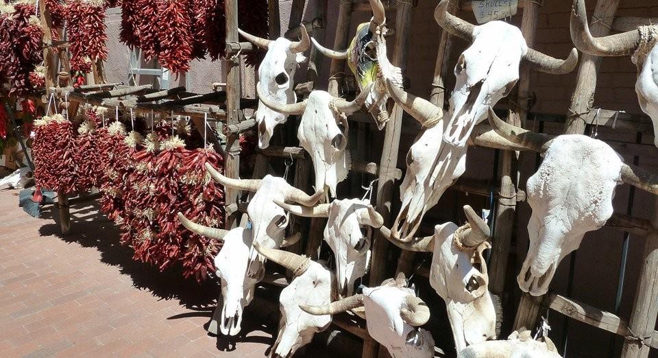 Cảnh tượng ám ảnh tại chợ bùa ngải lớn nhất thế giới ở châu Phi
