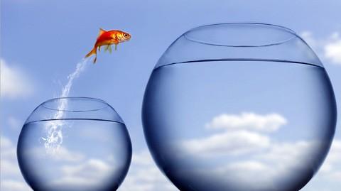 Xem ngay 3 bài học thú vị về sự kỳ vọng trong cuộc sống