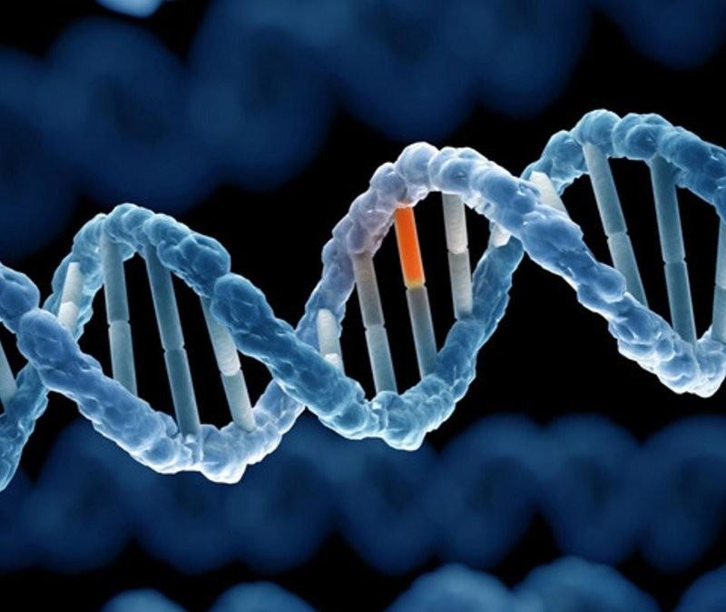 """Mách bạn một sự thật """"tàn nhẫn"""": 10 căn bệnh này di truyền từ bố mẹ sang con cái"""