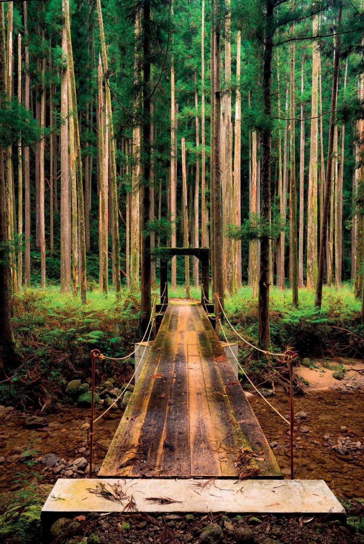 6 địa điểm thiên nhiên tuyệt đẹp giúp bạn chữa lành tâm hồn