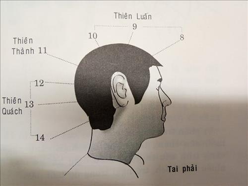 Vận số tuổi niên thiếu: Đôi tai nói lên số mệnh cuộc đời