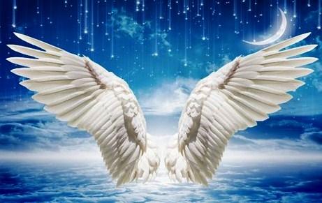 Đôi cánh bạn chọn sau đây sẽ tiết lộ sức mạnh tiềm ẩn của bạn