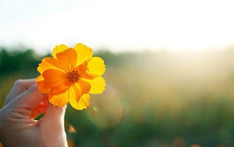 Bất hạnh lớn nhất của đời người đó là nhìn đâu cũng thấy lỗi sai của người khác