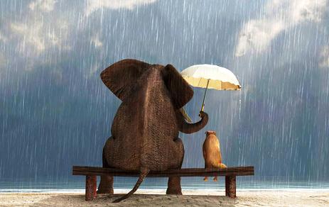 Phàm những gì miễn phí đều không được người khác coi trọng, đừng cho đi lòng tốt quá dễ dàng